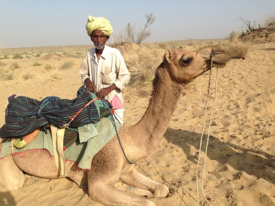 Master of the Camels